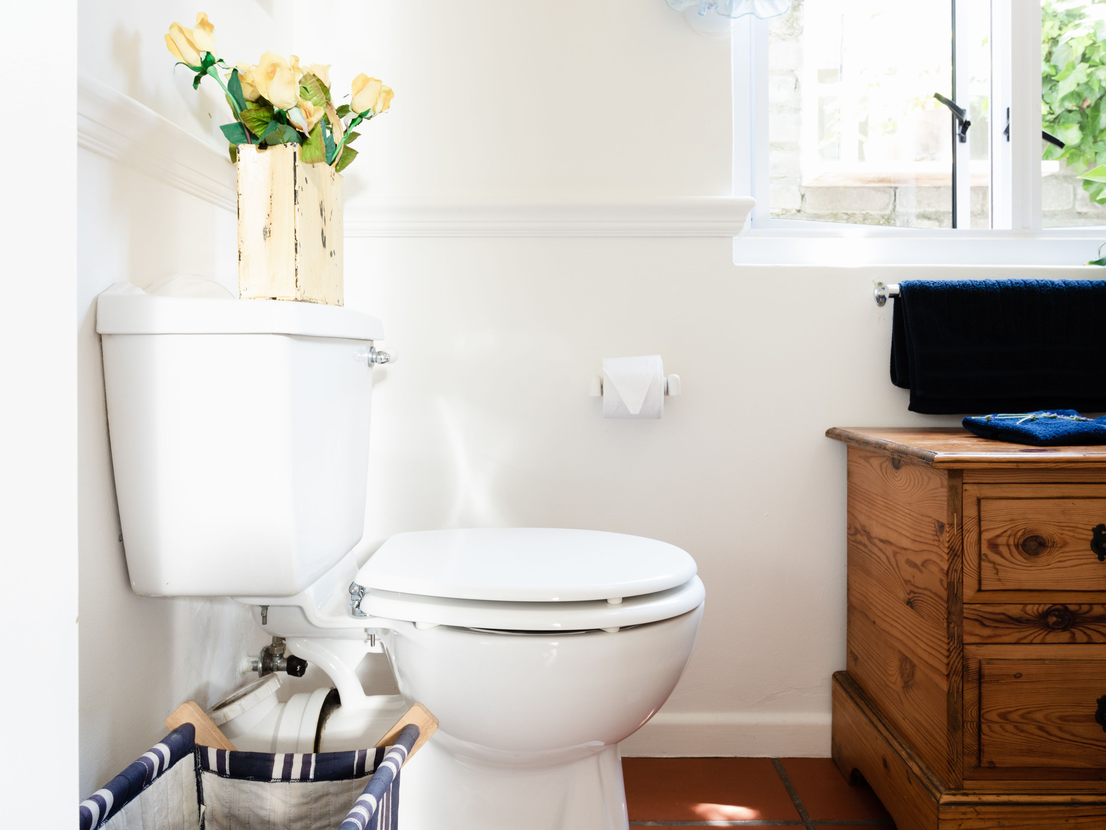 Common Toilet Problems You Can Fix Yourself