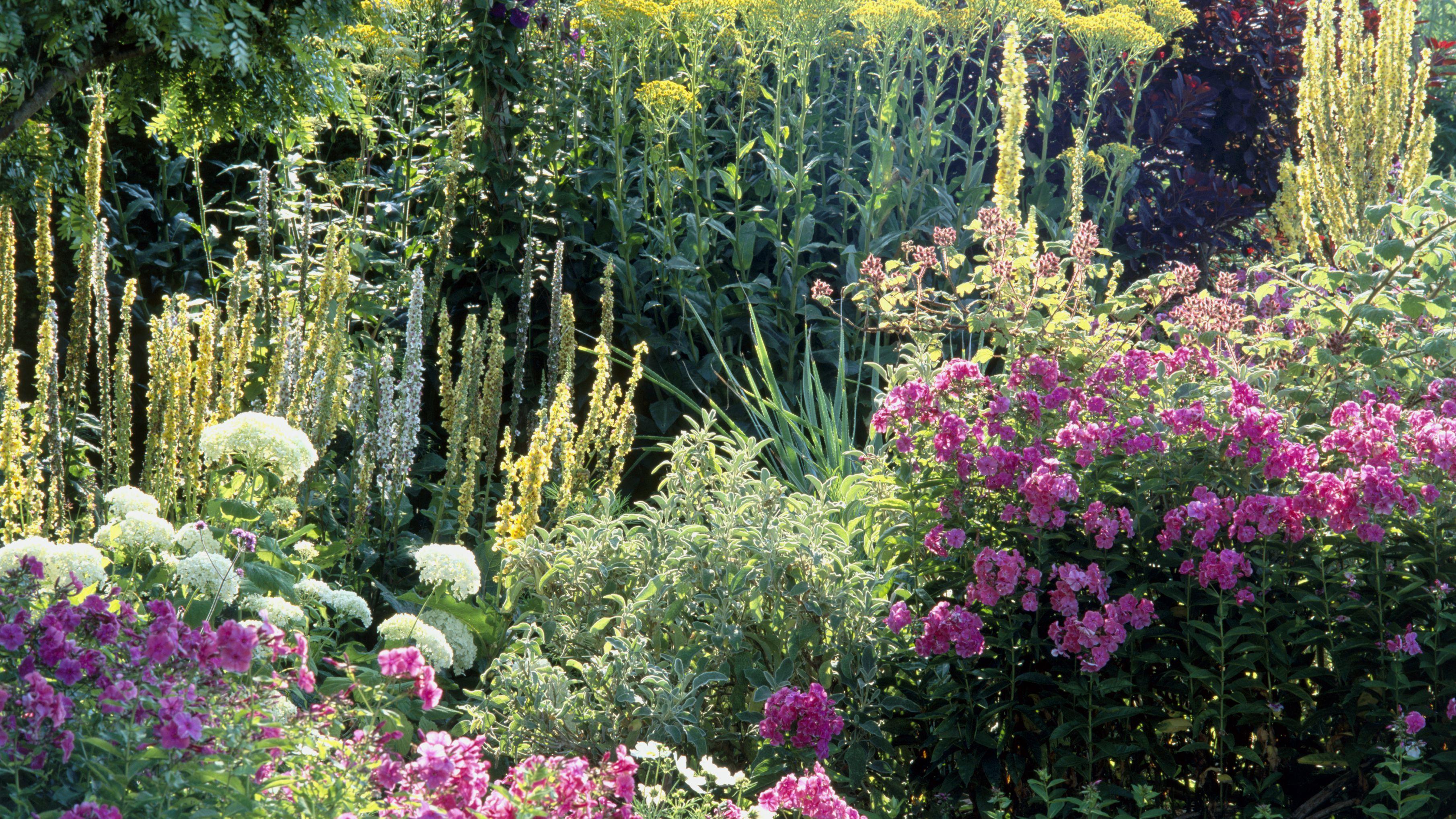 Gorgeous Flower Garden Ideas