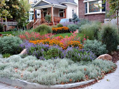 Garden Makeover Beautiful Salt Lake City Bungalow With Native Plants Landscaping Ideas