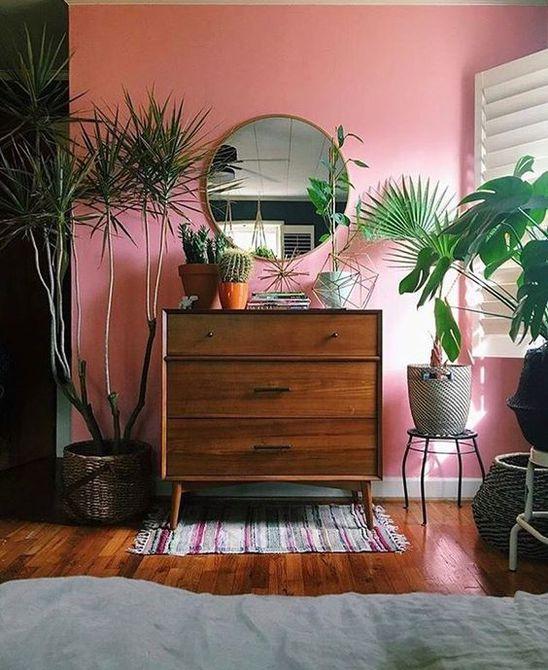 Habitación con paredes de color rosa y plantas verdes exuberantes