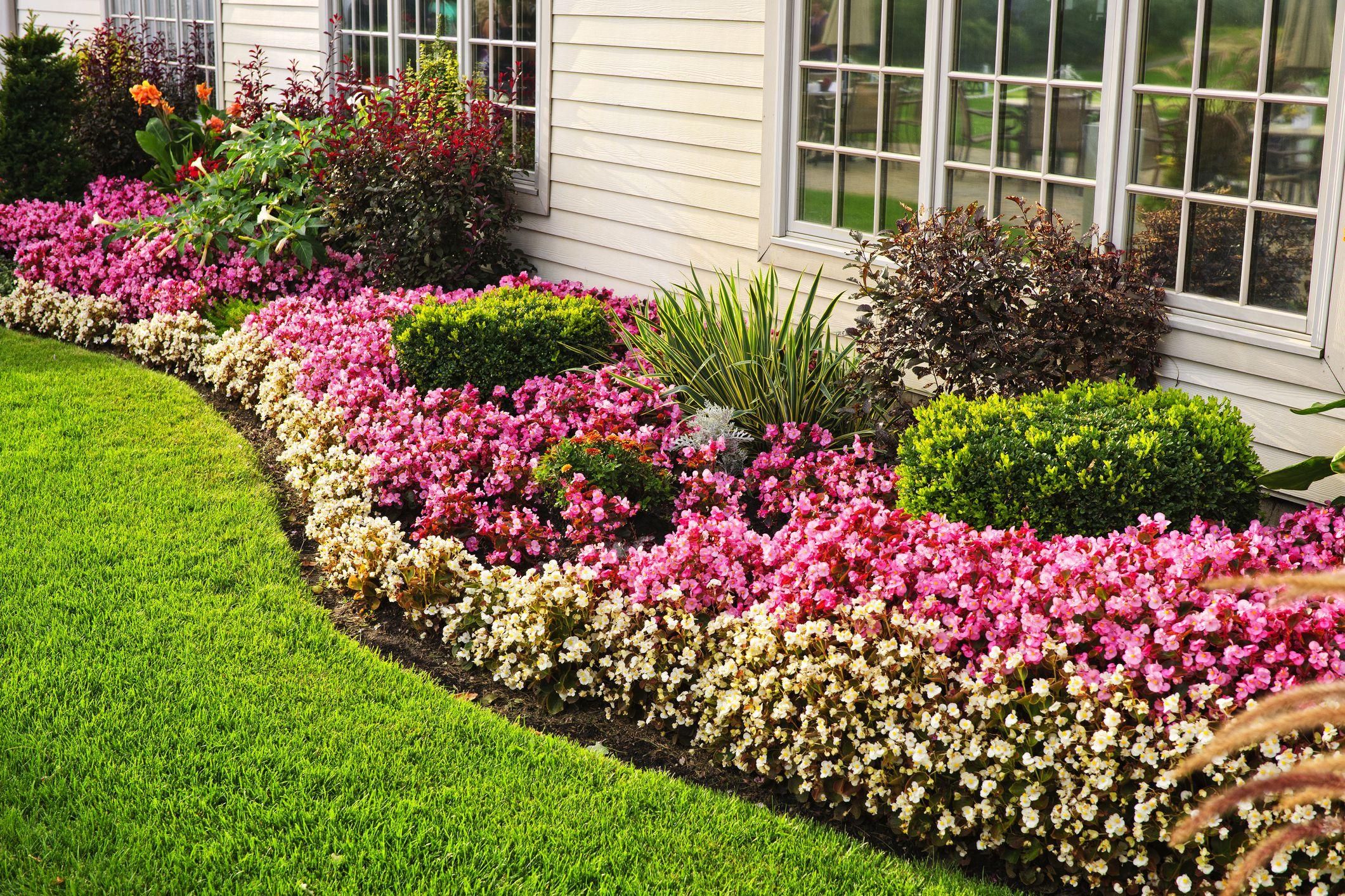 Image of: 15 Garden Edging Ideas