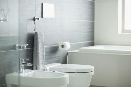 Fantastic Should I Have Good Feng Shui In The Bathroom Download Free Architecture Designs Pendunizatbritishbridgeorg