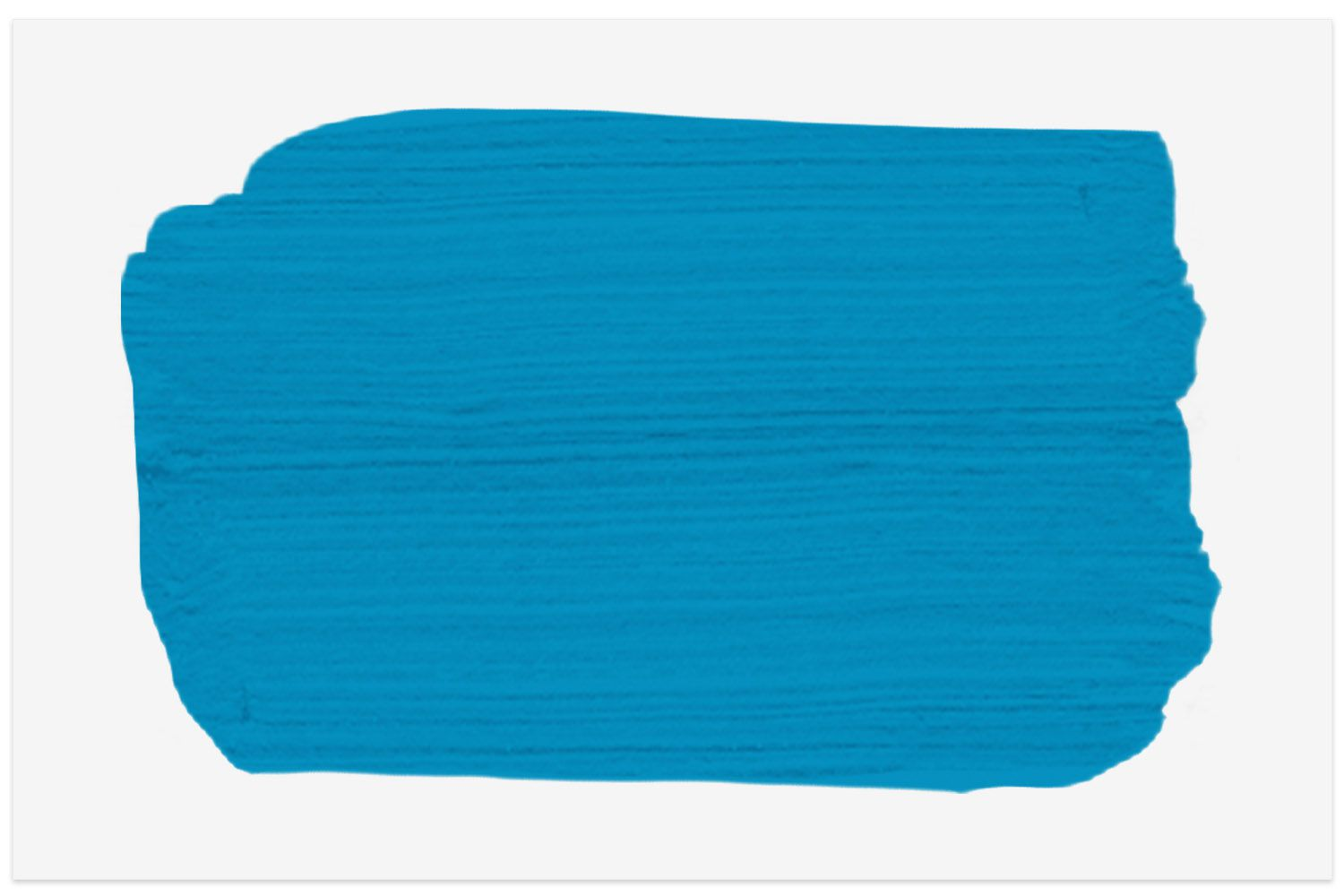 Bellflower paint swatch from PPG Paints