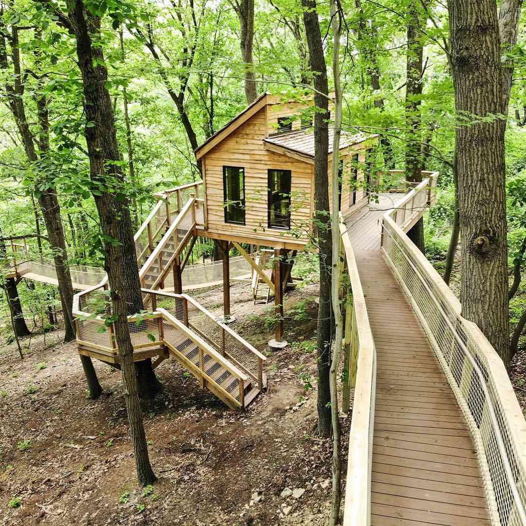 Large tree house with winding walkways