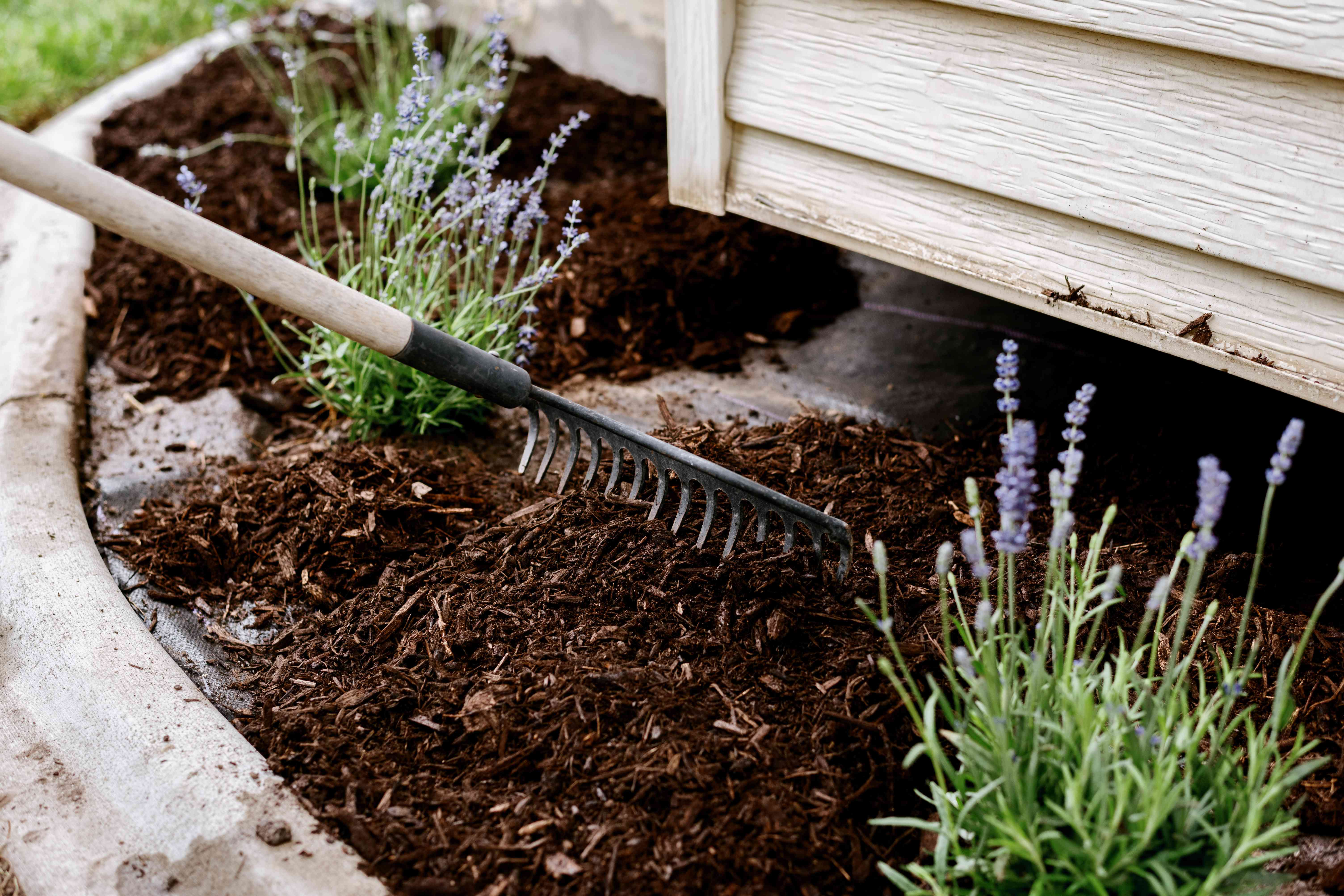 adding mulch to the flower bed