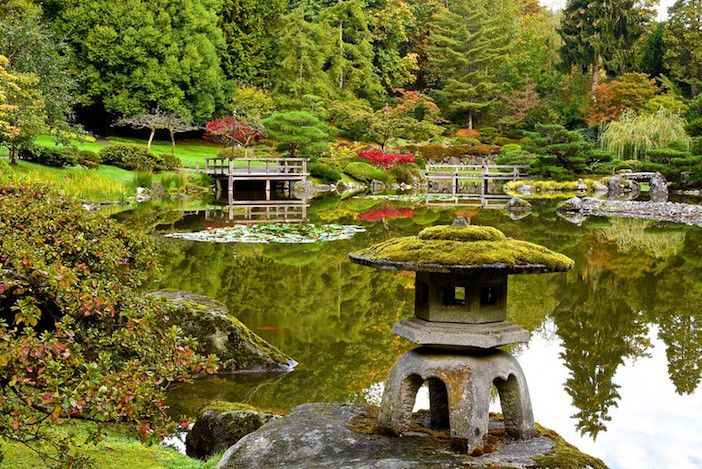 Large pond in Japanese garden with stone pagoda sculpture covered in moss and stone and wood bridges in background.