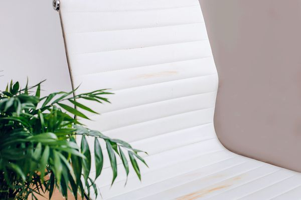 White leather chair with brown stains next to houseplant