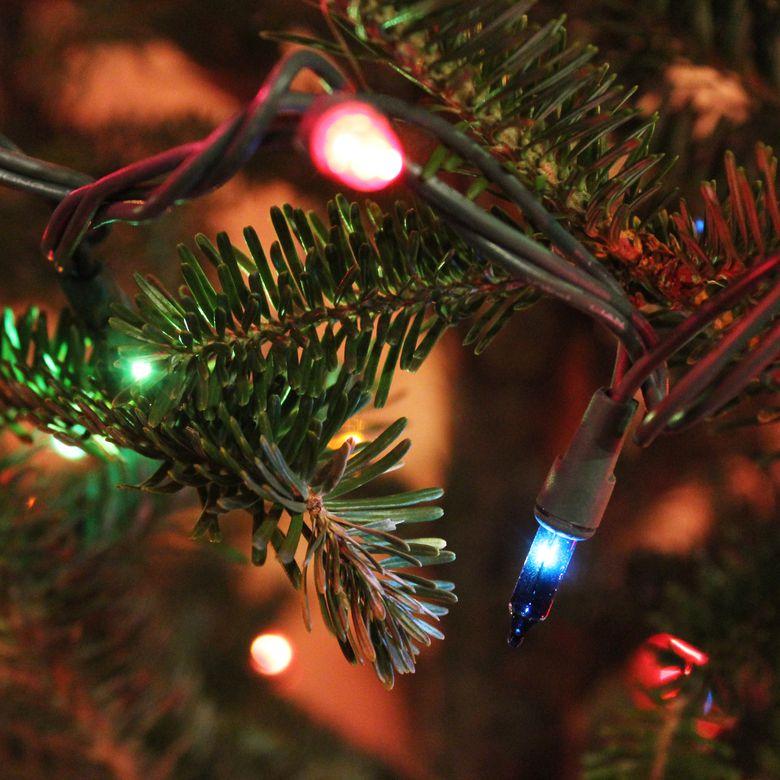 Holiday Wonderland Mini Multi Color Christmas Light Set
