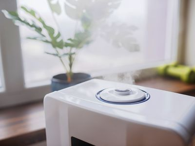 Humidifier releasing steam near window with houseplant