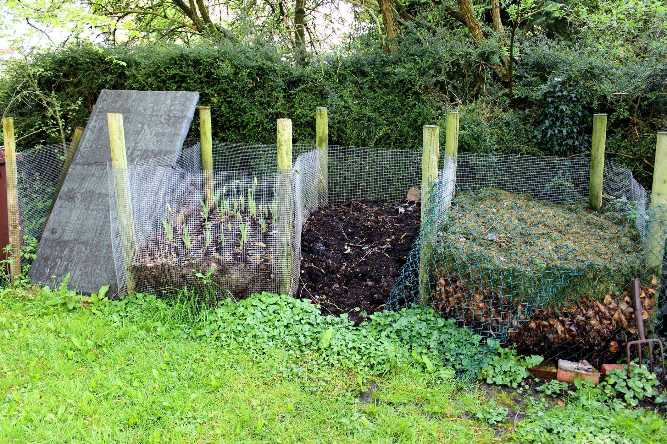 Compost bins built with wire