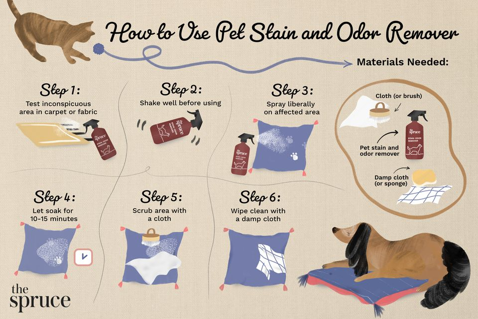 How to Use Pet Stain and Odor Remover