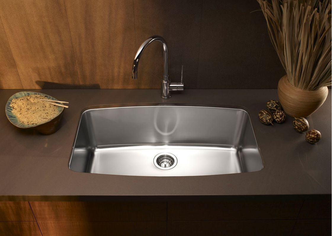 Blanco Performa stainless steel sink with a brown countertop, wood walls, plant, and rocks on the counter.