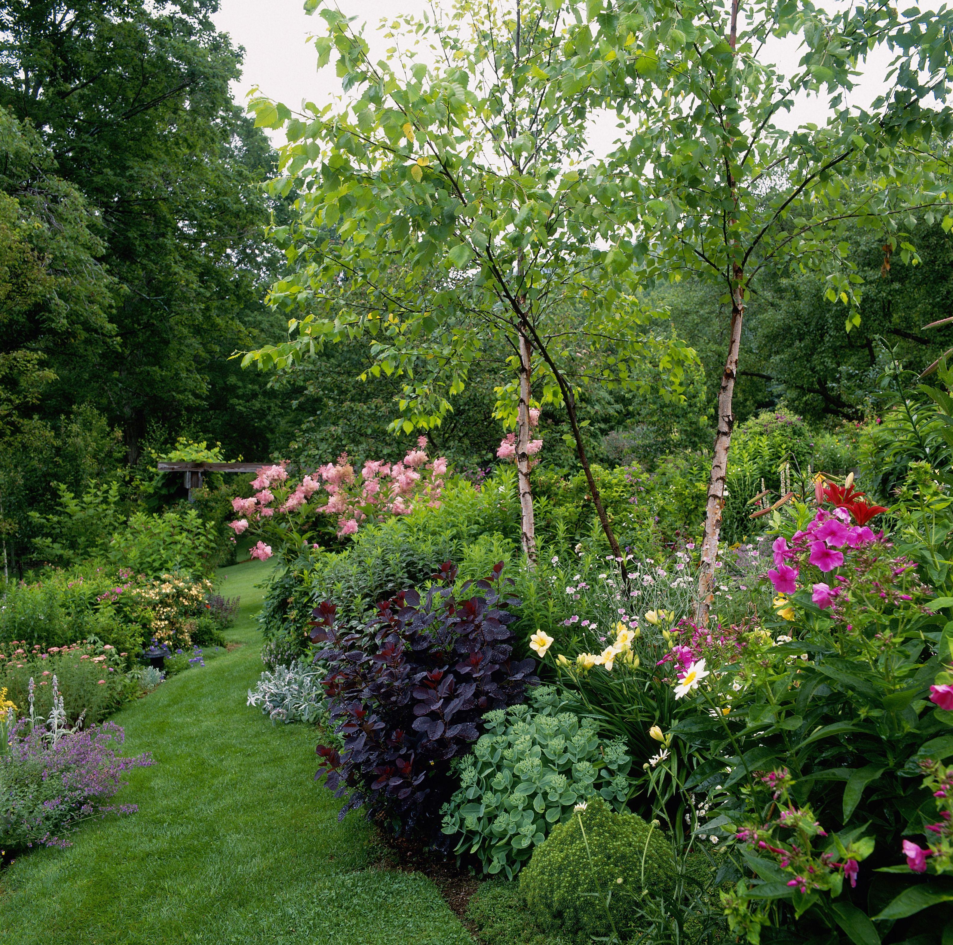 Verano Jardín de flores