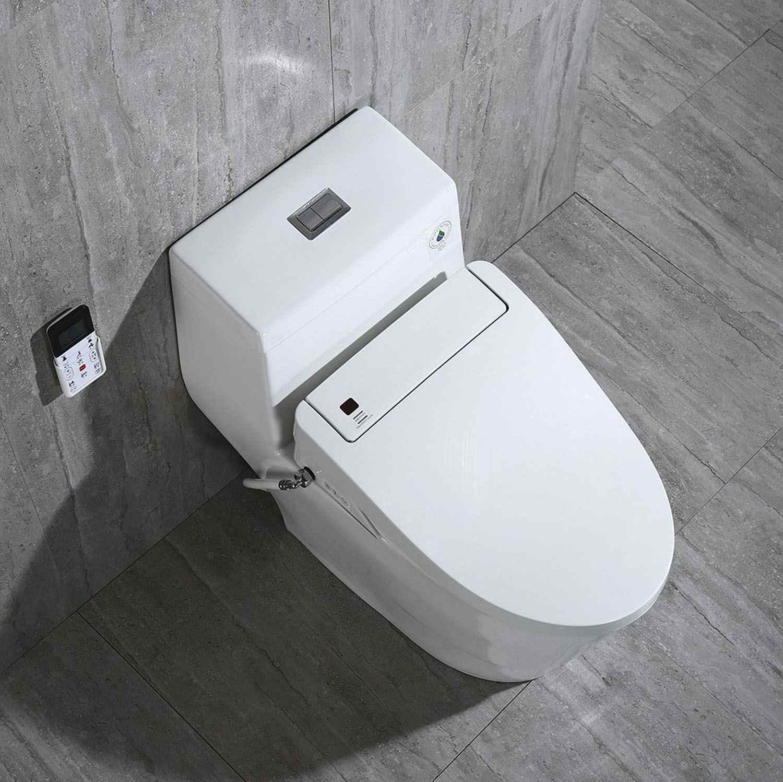 Four Types Of Toilets