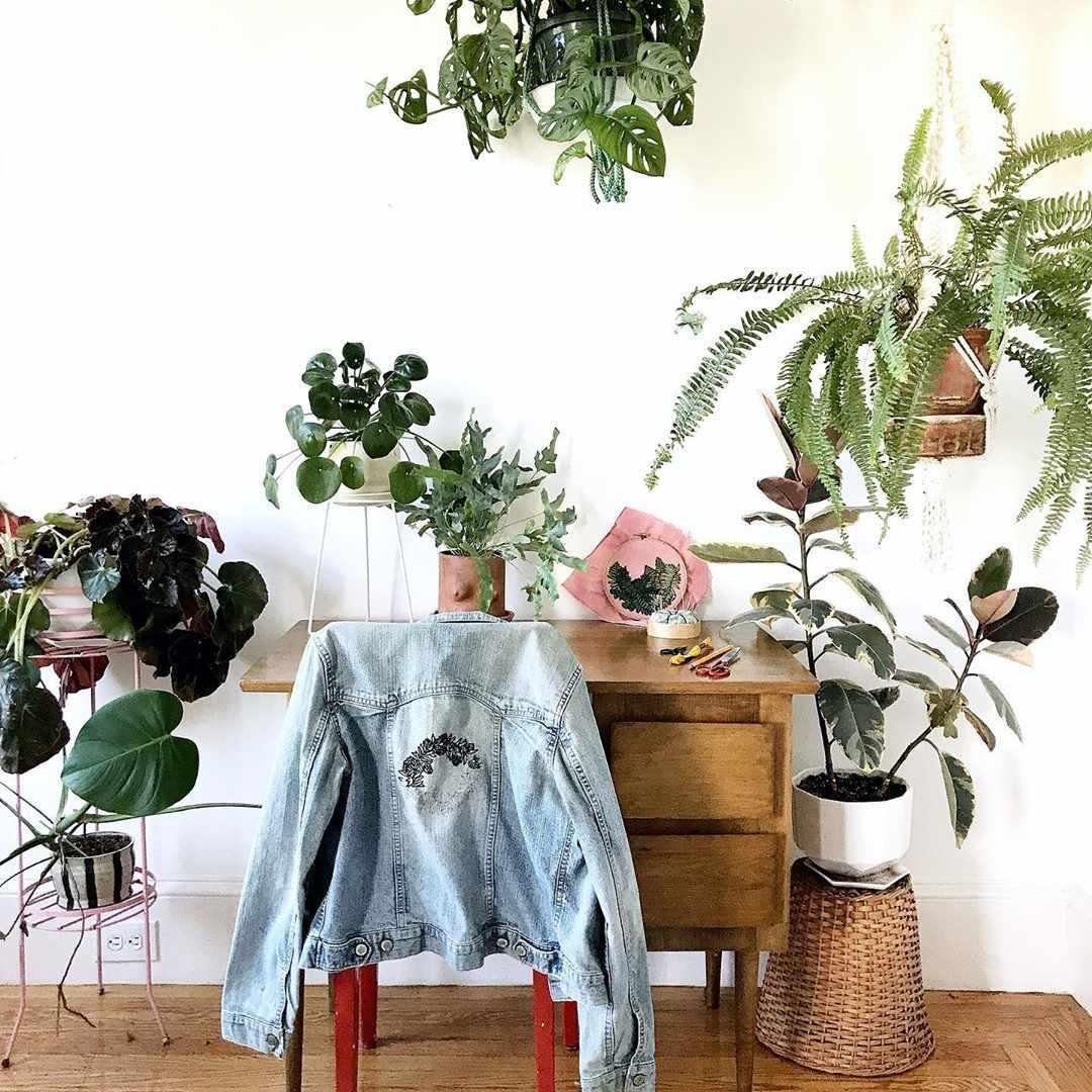 Desk with plants around it