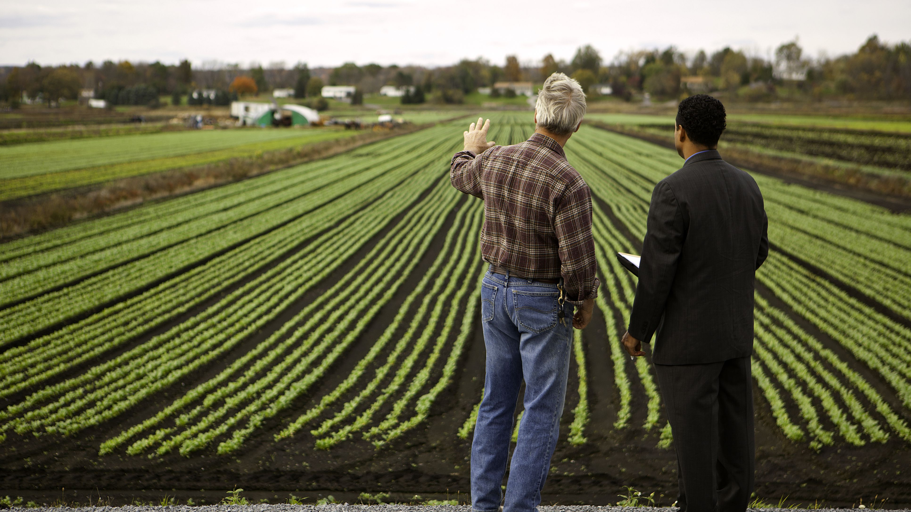 Old Young In The Farm Porn Videogalleries how to write a small farm business plan