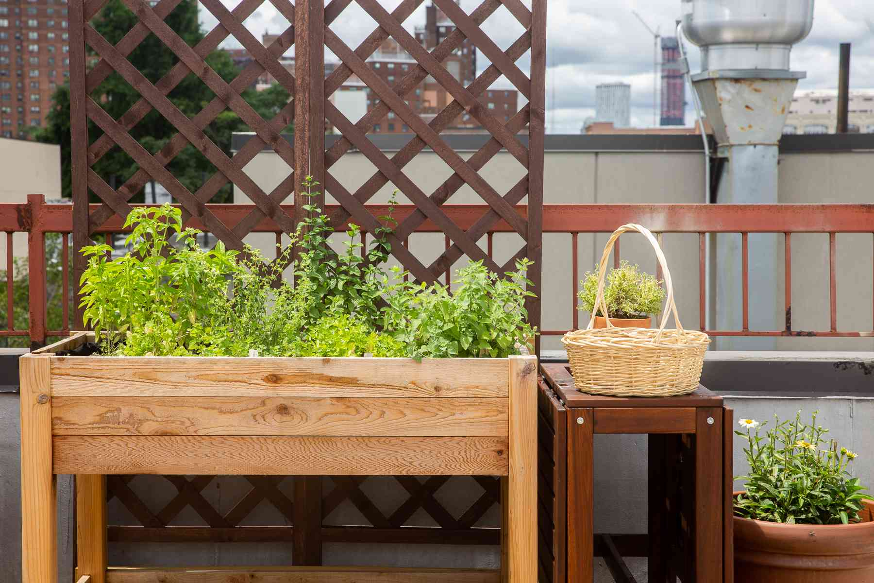 Raised garden bed next to table with basket and plants in front of trellis