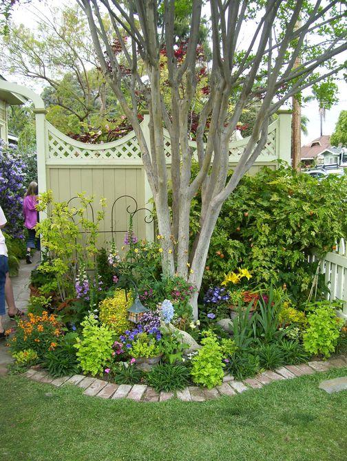 árbol rodeado de plantas perennes