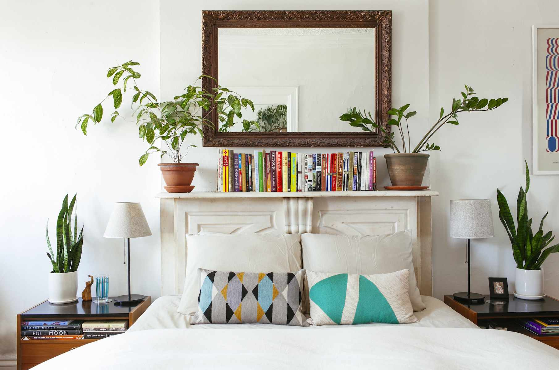 11 Houseplants Ideas That Liven Up Your Home