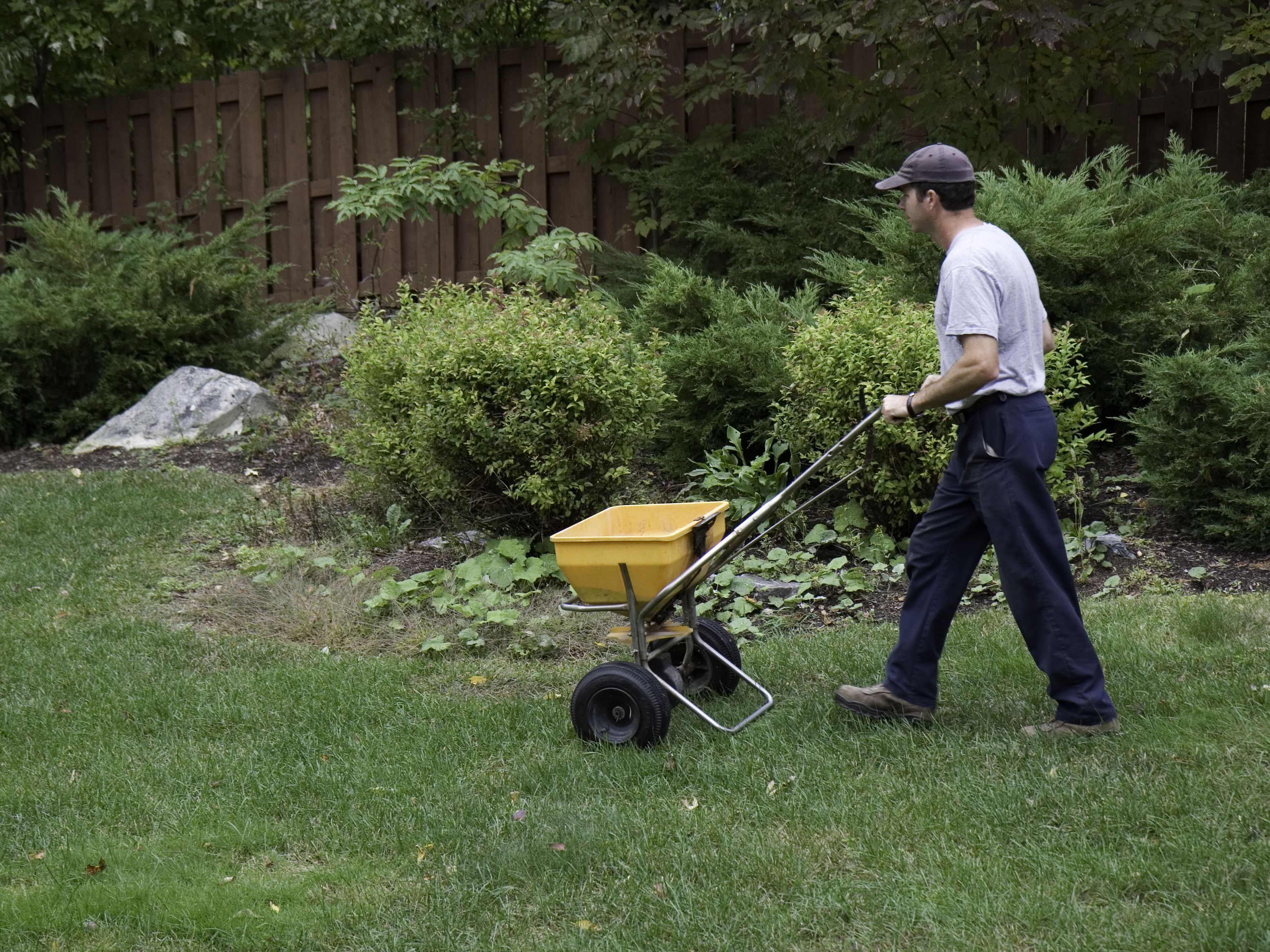 How To Fertilize Your Garden Or Lawn In Late Fall