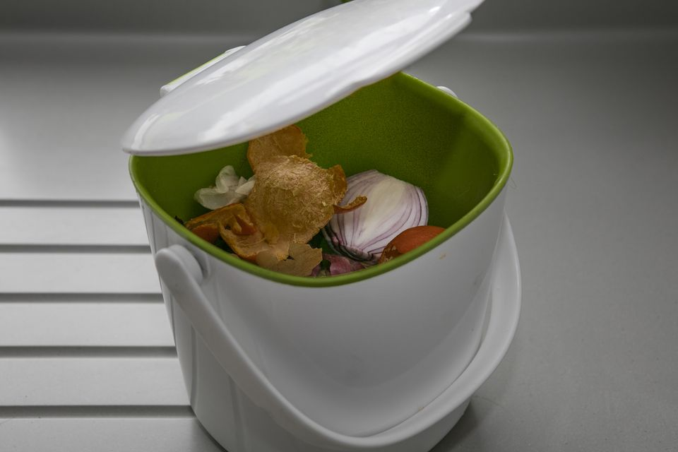 Tips for Indoor Composting