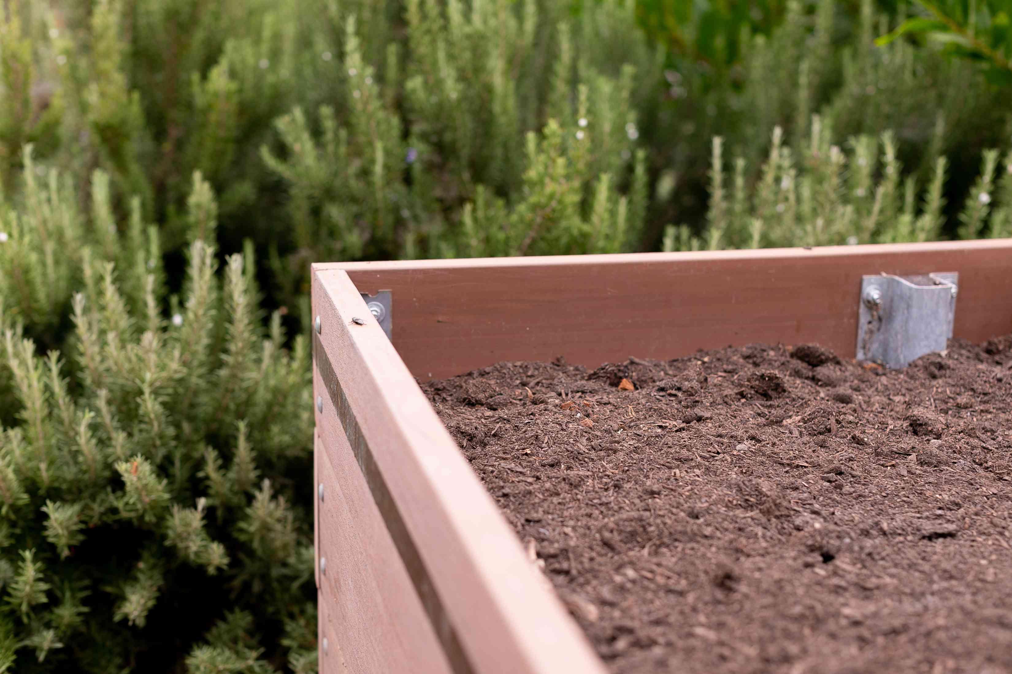 Raised garden bed corner with soil for vegetable garden closeup