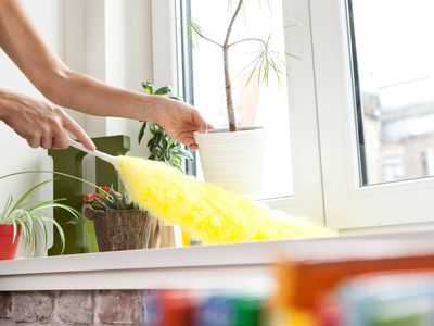 person dusting a window sill