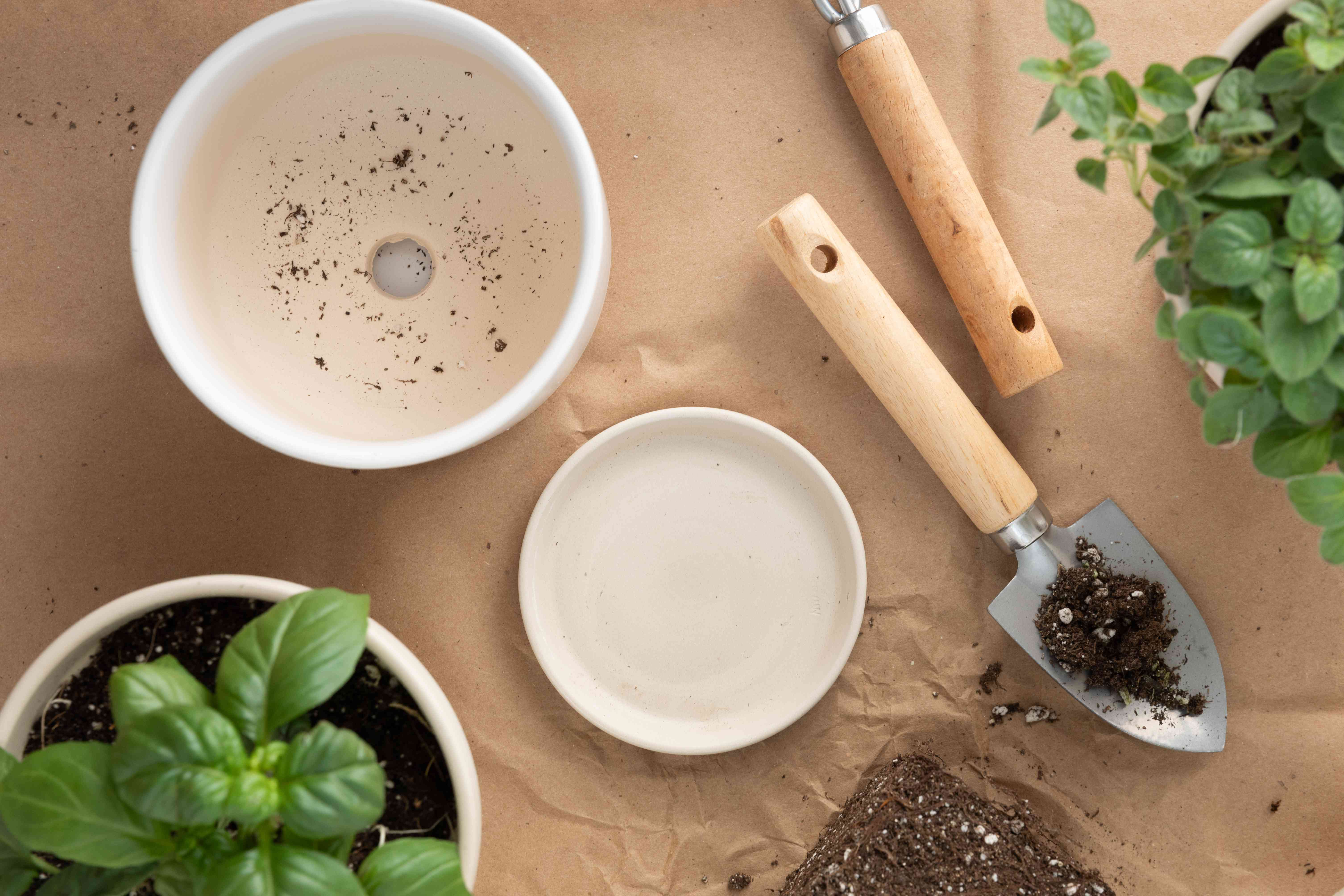 items for potting herbs