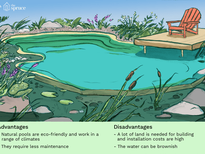 natural swimming pool illustration