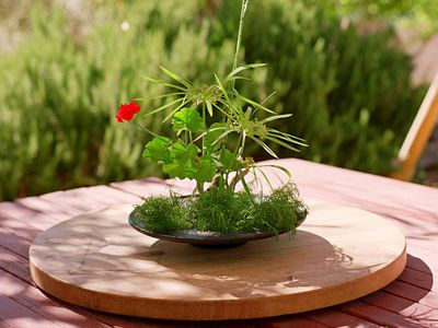 Ikebana arrangement on patio table