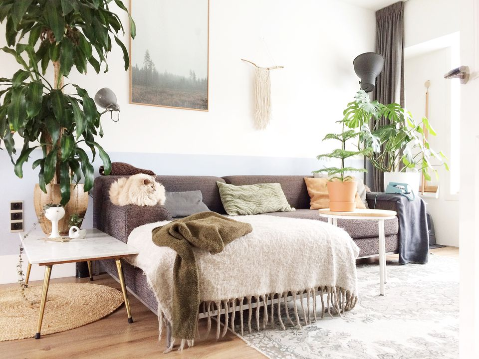 Boho living room with taupe couch and plants