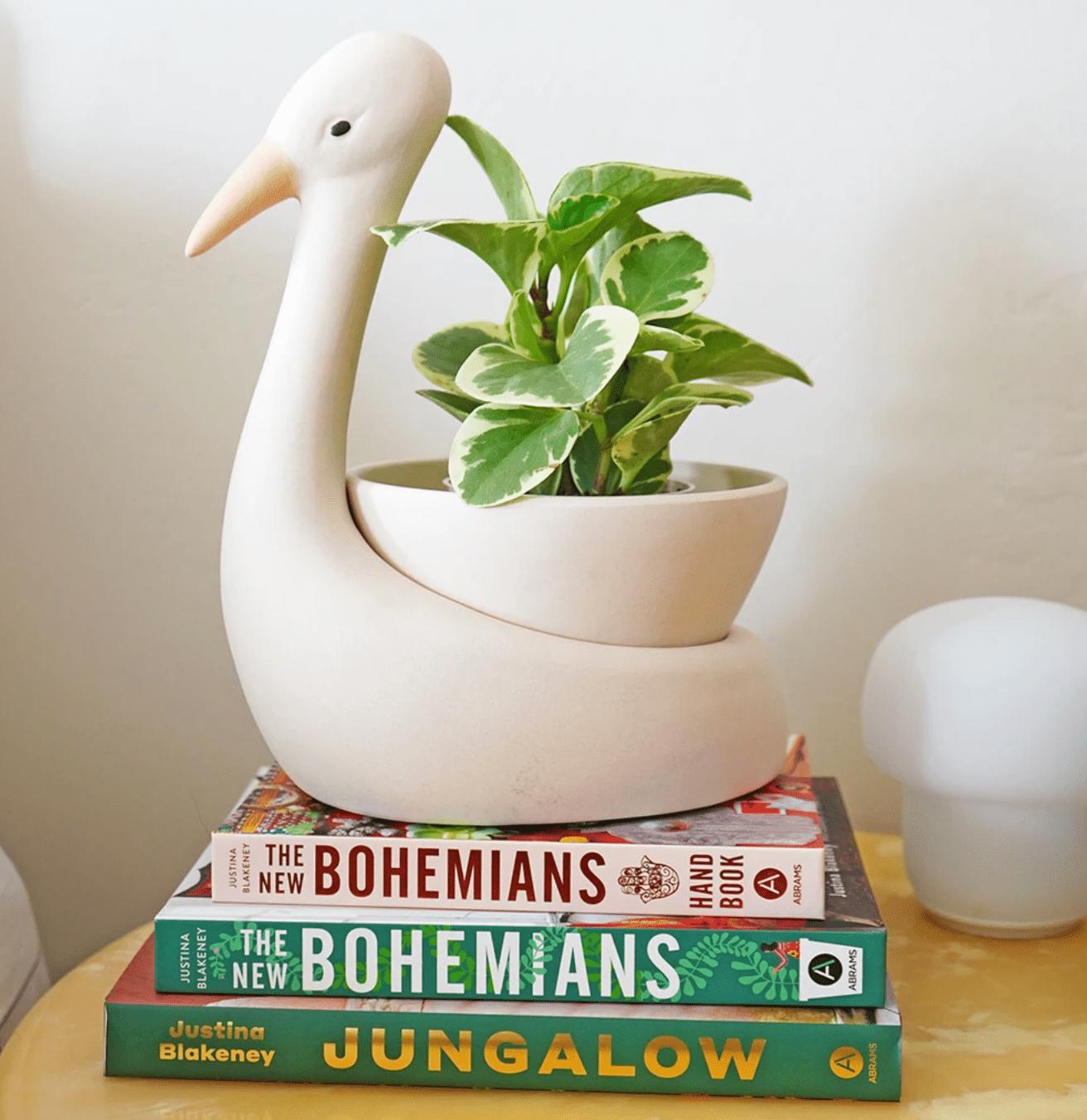 The Jungalow Egret Savannah Garden Pot