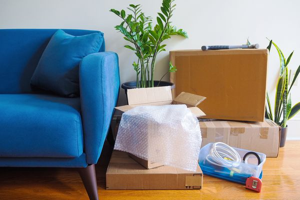 Blue couch next to moving boxes, houseplants and hardware