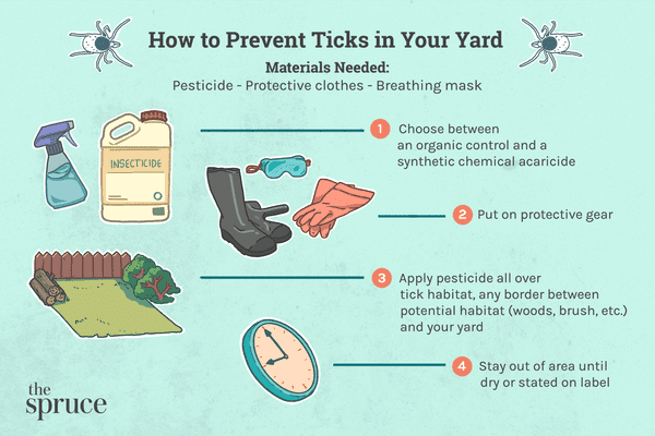 How to Prevent Ticks in Your Yard