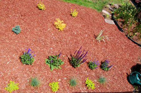 How to select and arrange plants for flower beds this flower bed image consists of shrubs and perennials mulch is your floor mightylinksfo