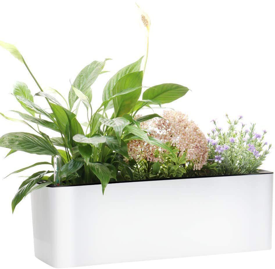 GardenBasix Elongated Self-Watering Planter Pots Window Box