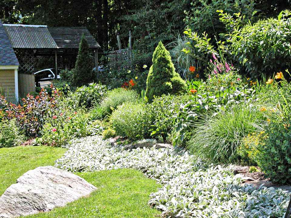 A beautiful garden in a large backyard