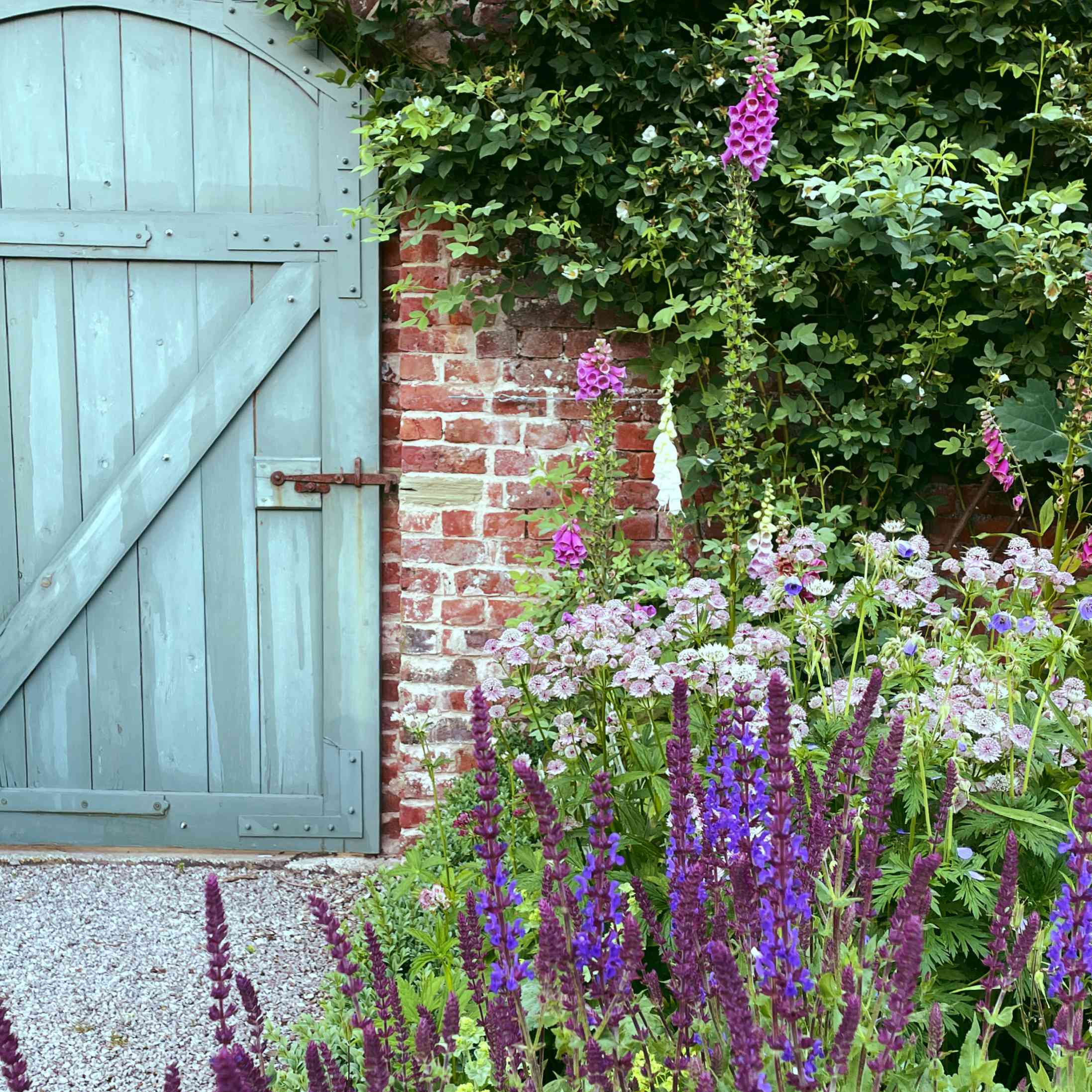 a teal gate and tons of blooming flowers adorn this garden space