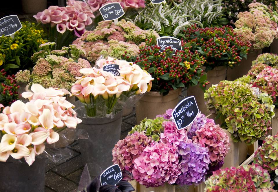 A flower market full of beautiful wedding blossoms