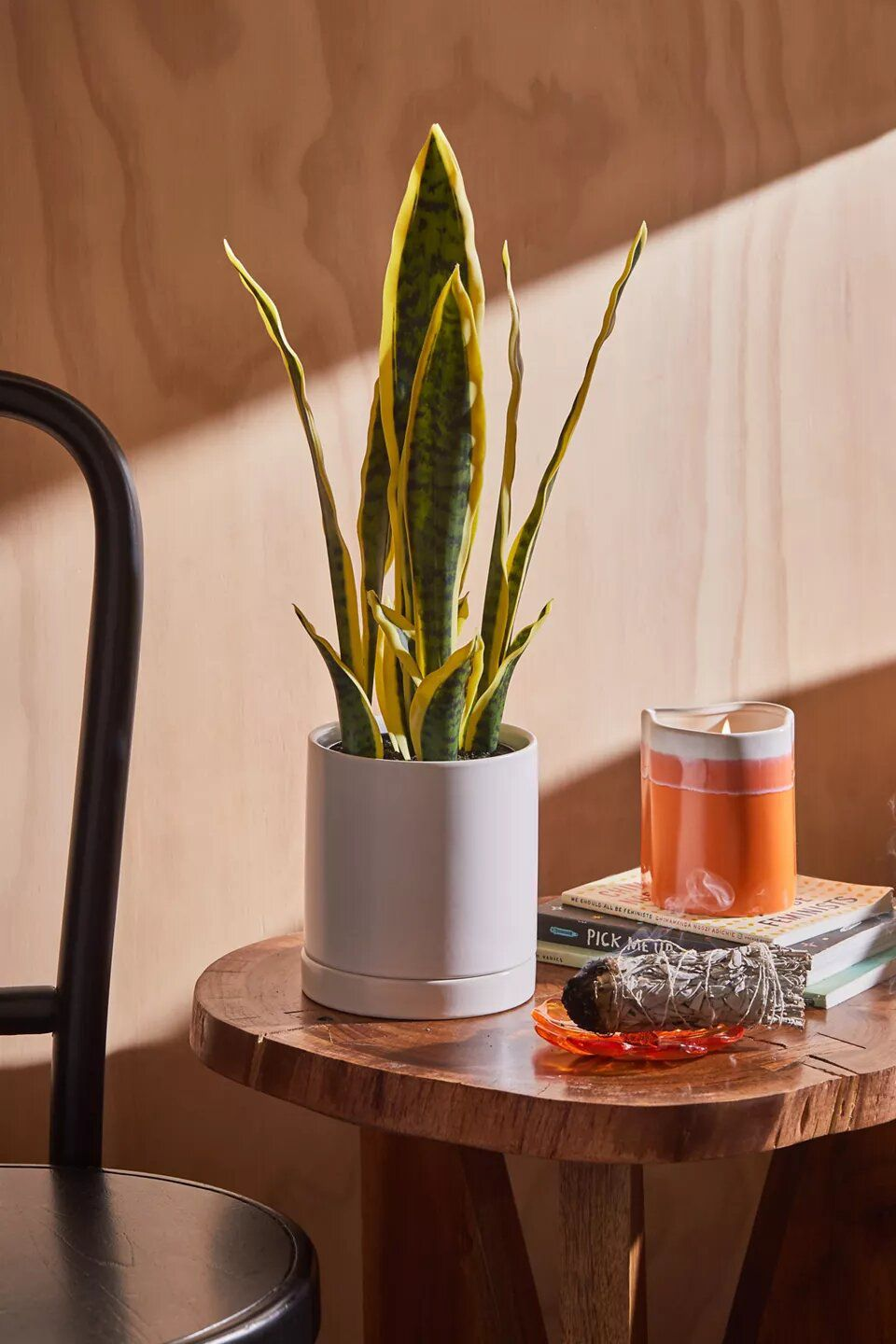 Urban Outfitters Sansevieria Faux Plant