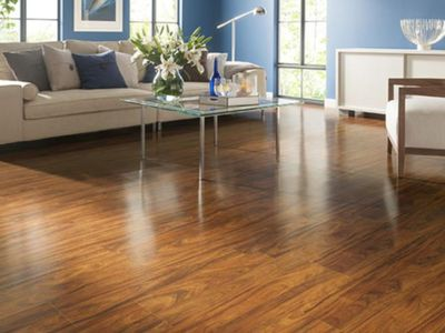 Lowe S Style Selections Laminate Flooring Is A Decent Economy Product
