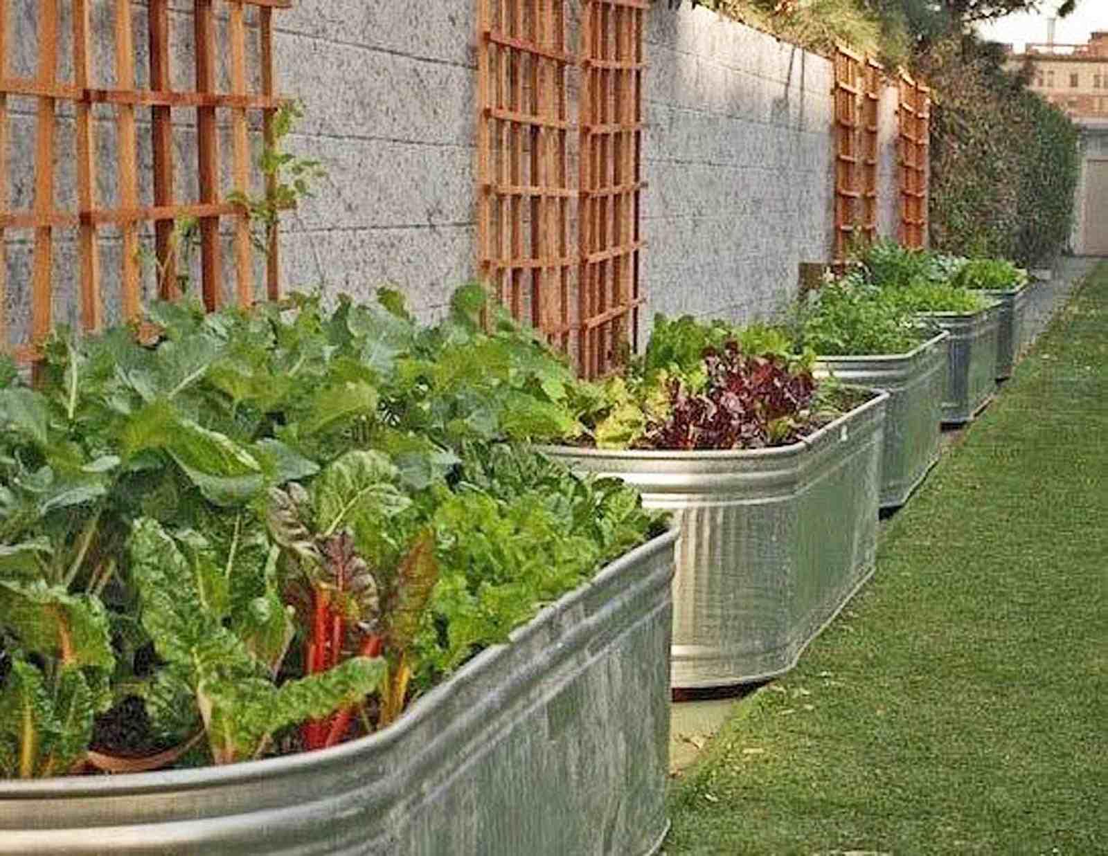 Picture of: 15 Raised Bed Garden Design Ideas