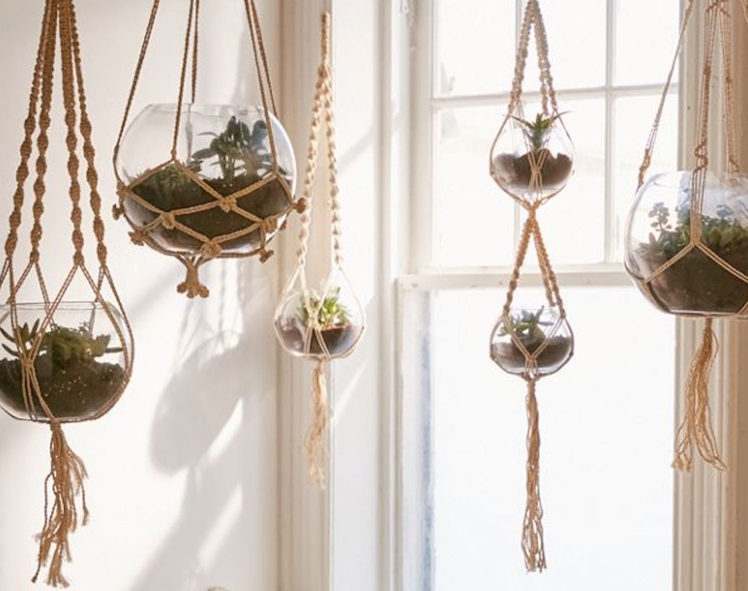 The 12 Best Macrame Plant Hangers Of 2021