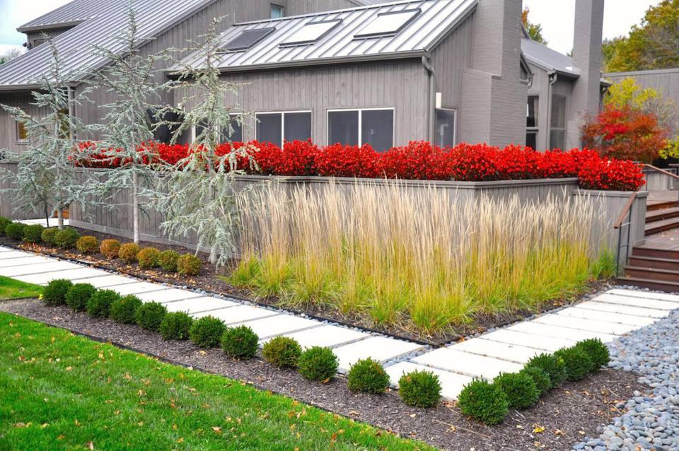 Landscape Makeover A Colorful Contemporary Yard In Missouri