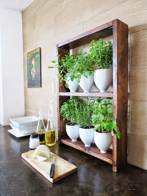 Jardín de hierbas de bricolaje de cocina