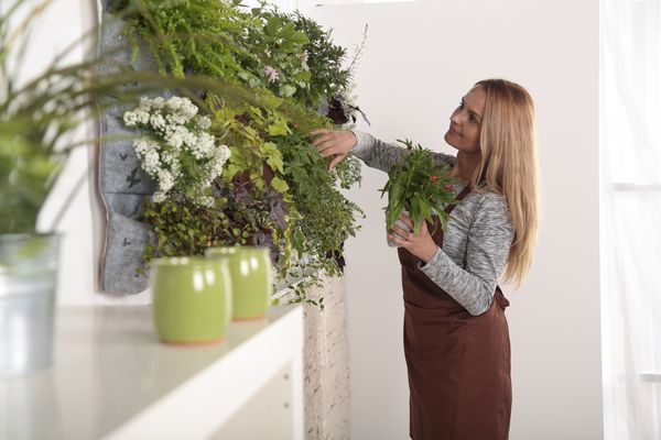 Woman tending to an indoor plant wall