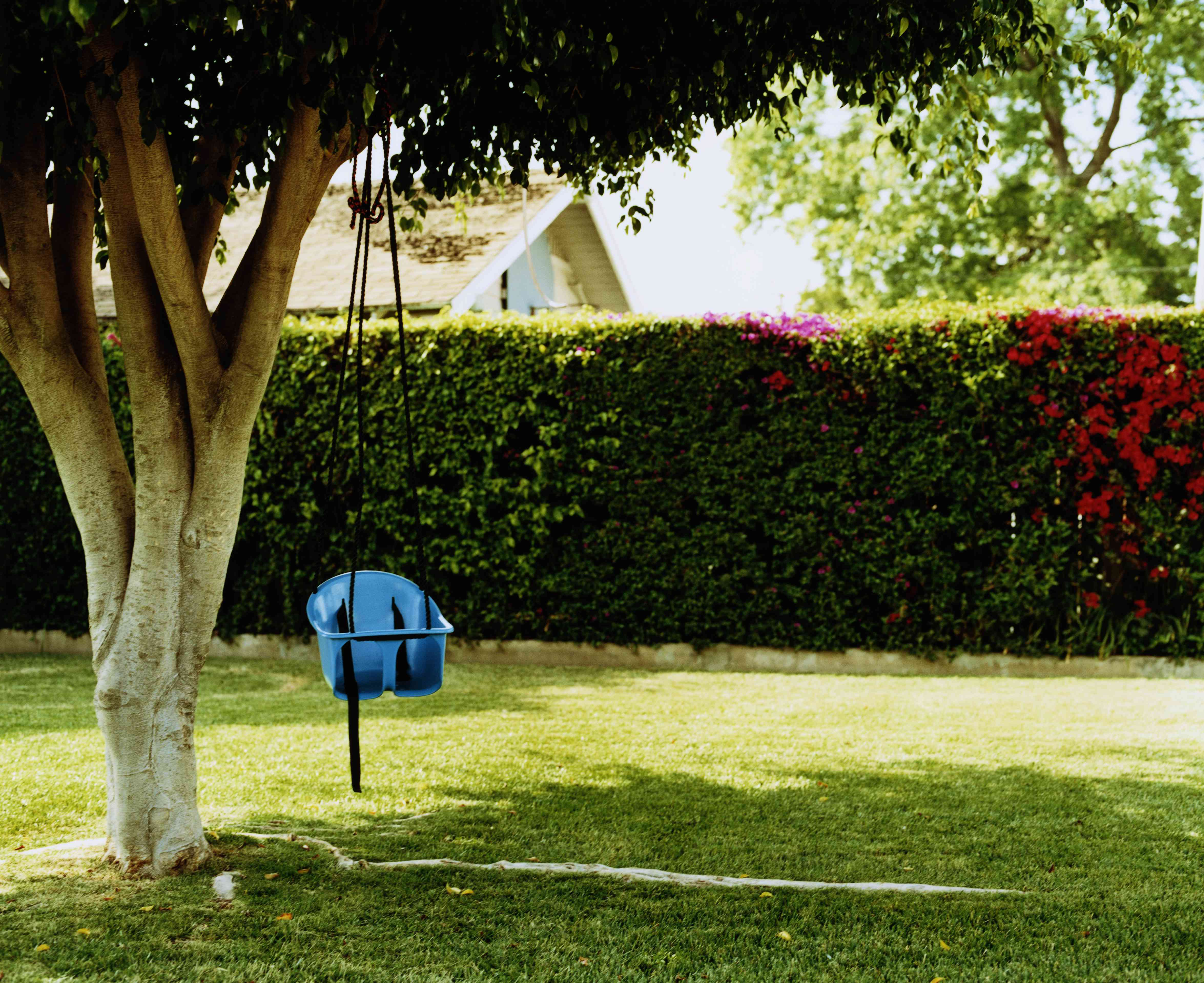Make a Private Backyard
