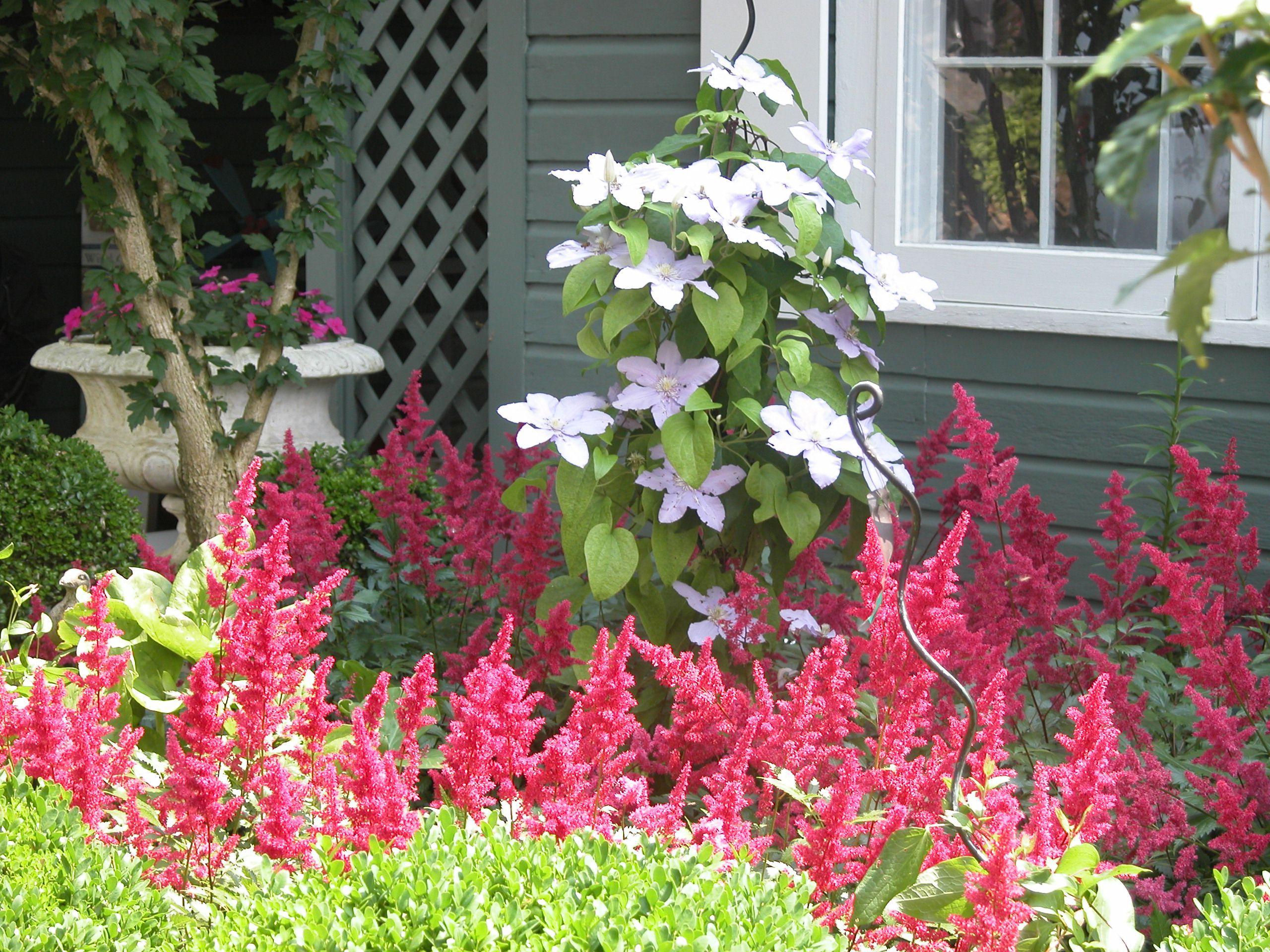 Monochromatic garden