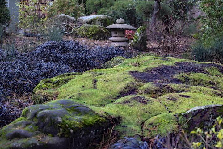 Moss covered boulders and black grasses in front of a stone sculpture in a Japanese garden.