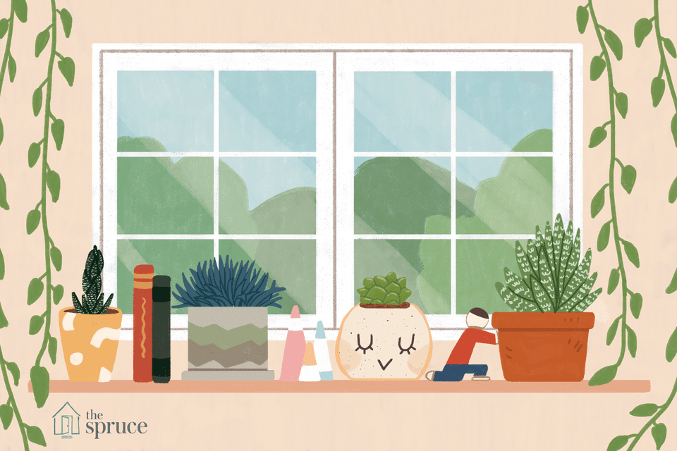 Illustration of houseplants by a window